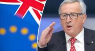 EU Brexit, EU a ČR